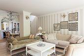 Vintage Mansion - Drawing Room