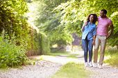 Young African American Couple Walking In Countryside
