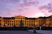 Christmas Market Schonbrunn - Vienna