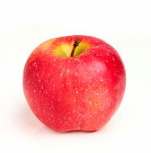 Moldovan Red Apple Closeup.