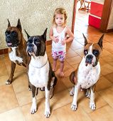 Child And Her Dogs