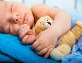 Cute newborn baby sleeps in a small bed with teddy bear closeup