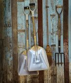 farm tool pitchfork and two shovels against old wooden wall use as rural farm scene