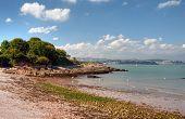 Elberry Cove, Devon