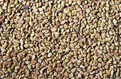 picture of fenugreek  - A closeup of dried fenugreek seeds  - JPG