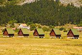 Ecotouristic Camping(Montenegro)
