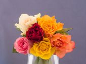 Bunch of multicolored roses
