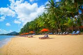 Tropical resort panorama in Koh Samui, Thailand