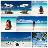 Caribbean Collage