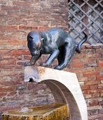 Siena. Quarter of a panther. Monument to the patroness of quarter