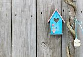 Teal blue birdhouse with wooden hearts hanging on vine wrapped honey locust tree