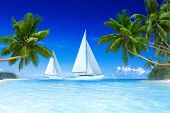 3D Sailboats on beach and palm tree.
