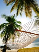 Relax in a hammock on holiday.