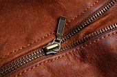 image of nylons  - Sleeve zipper detail of a brown leather jacket - JPG