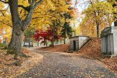 Cemetery Road Past Mausoleums in Fall