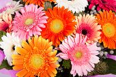 Beautiful bunch of gerberas