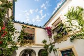 Typical Patio In Cordoba, Andalusia, Spain.