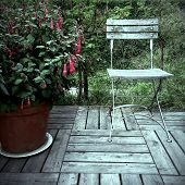 Red Fuchsia And Old Wooden Chair