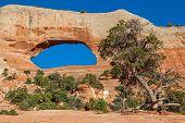 Wilson Arch Moab Utah