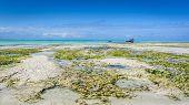 Zanzibar Beach Nungwi