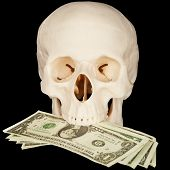 Skull Clutched In Teeth Bunch Of Money