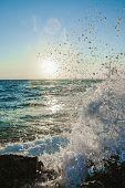 Surf At Dawn