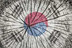 stock photo of hangul  - flag of South Korea on cracked wooden texture - JPG