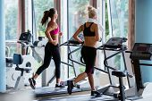 picture of treadmill  - Beautiful group of young women friends  exercising on a treadmill at the bright modern gym - JPG