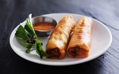 picture of dipping  - twp crispy Vietnamese spring rolls on plate with dip and garnish - JPG