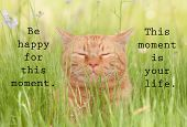 Be happy for this moment. This moment is your life - an inspirational quote by Omar Khayyam, with an poster