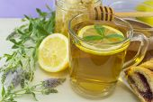 image of mints  - Cold healthy mint tea with lemon on a table with mint plant honeydipper and dessert - JPG