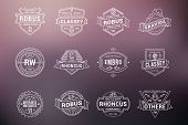 Set Of Hipster Vintage Labels, Logotypes, Badges. Thin Line Design Templates On Blurred Background poster