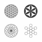 picture of kundalini  - Flower of Life - JPG