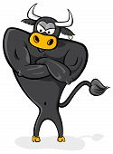 Bull with attitude