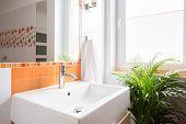 picture of wash-basin  - Ceramic wash basin in modern color toilet - JPG