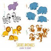 image of rhino  - Safari animals  - JPG