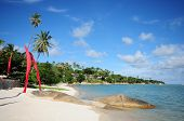 Beautiful tropical beach. Samui , Thailand