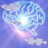 Gehirn-Puzzle