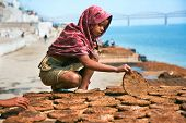 VARANASI, INDIA - FEBRUARY 10: Girl making cow dung cakes  on a bank of sacred river Ganges on February 10, 2008 in Varanasi, Uttar Pradesh, India.
