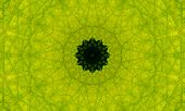 Bright Green Mandala Art With A Dark Core Surrounded By Patterns Made Of Fine Lines. poster