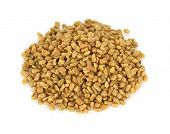 stock photo of fenugreek  - fenugreek seeds  - JPG