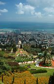 View Of Bahai Temple Gardens,haifa,israel