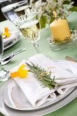 Daffodil table settings. Arrangements with yellow daffodil and fresh rosemary