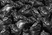 Background Garbage Bag Black Bin, Garbage Dump, Bin,trash, Garbage, Rubbish, Plastic Bags Pile Junk  poster