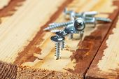 Screw Screwed Into A Wooden Bar. Object. Close Up. Macro Photography poster