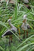 Two Duck Statues In The Pond.