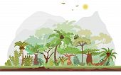 Vector Tropical Rainforest Landscape With Palms And Other Tropical Trees. Tropical Forest Panoramic  poster