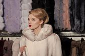 Sensual Woman In Fur, Luxury, Moneybags, Business. Shopping, Seller, Fashion Model, Customer. Woman  poster