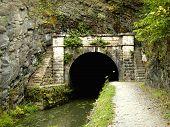 Pawpaw Tunnel