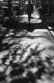 Light And Shadows In New York City. Shadows Of People Walking Street In Morning Light poster